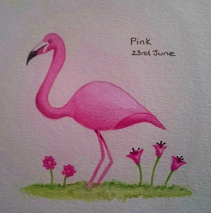 Pink (flamingo) doodle