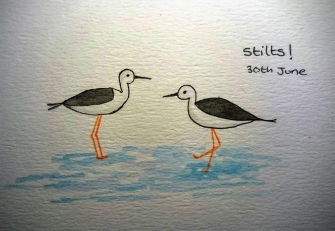 Stilts doodle