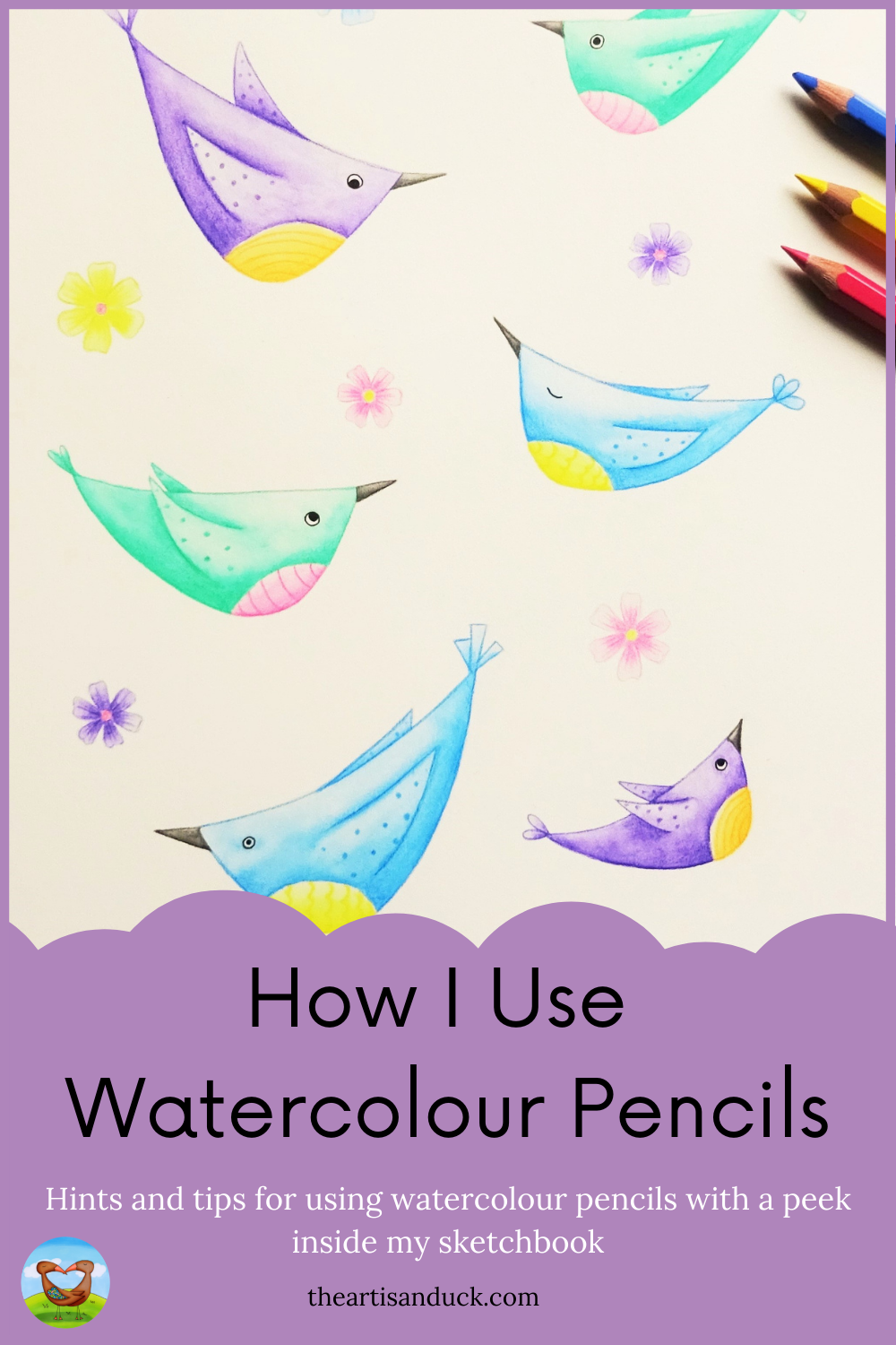An illustration of colourful birds and flower painted using watercolour pencils