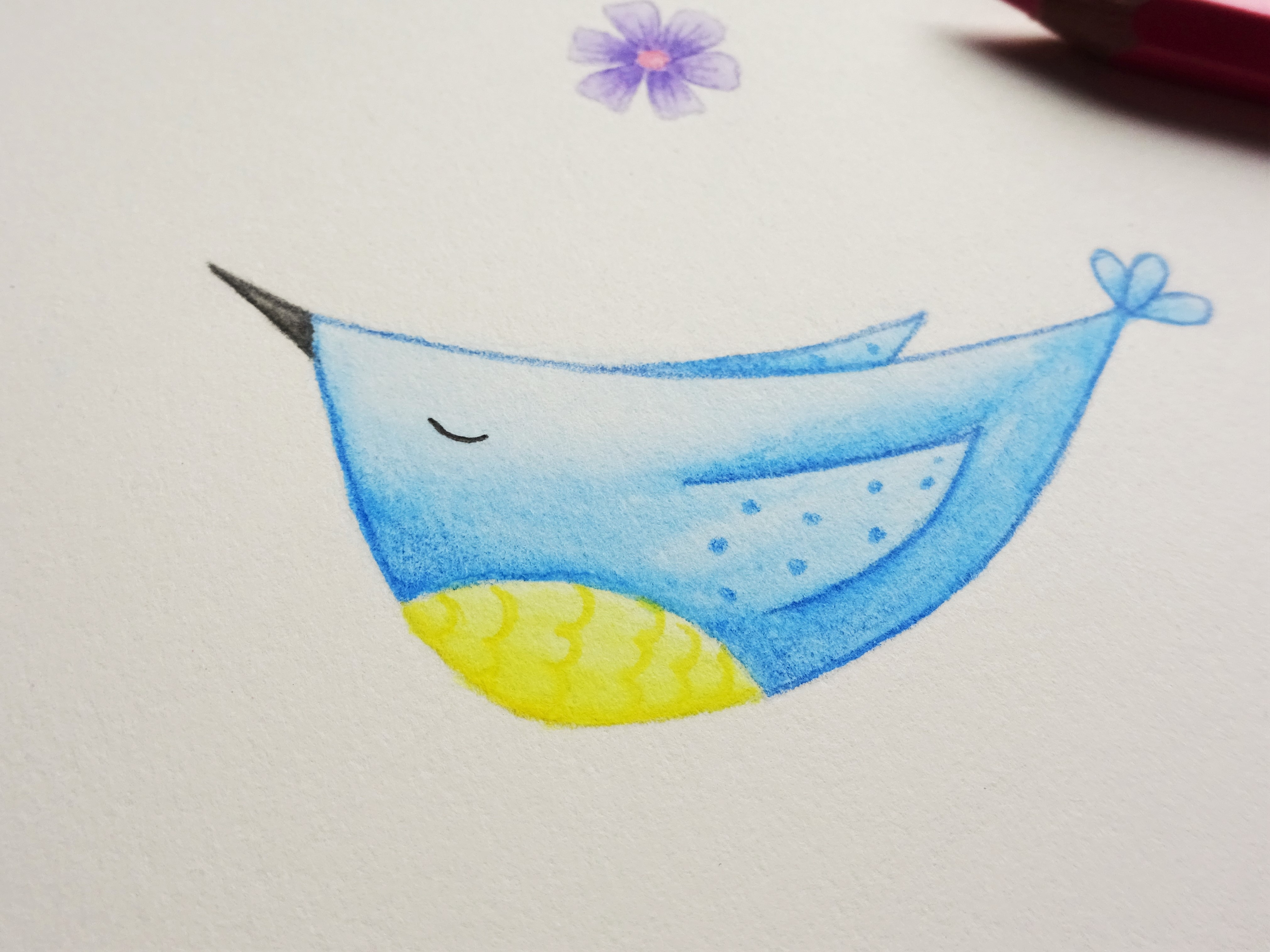 A blue watercolour pencil bird with a yellow tummy
