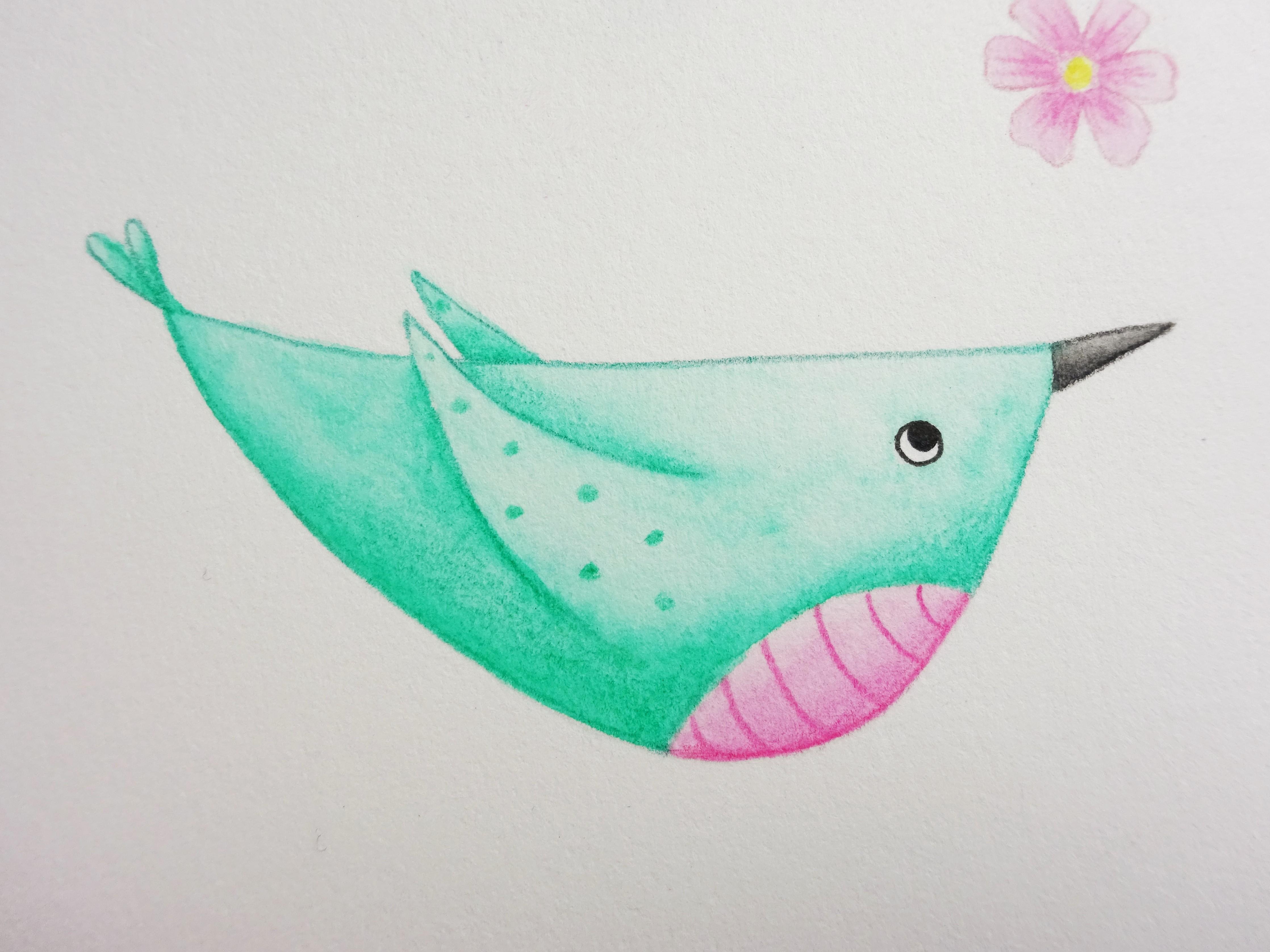 A green watercolour pencil bird with a pink tummy