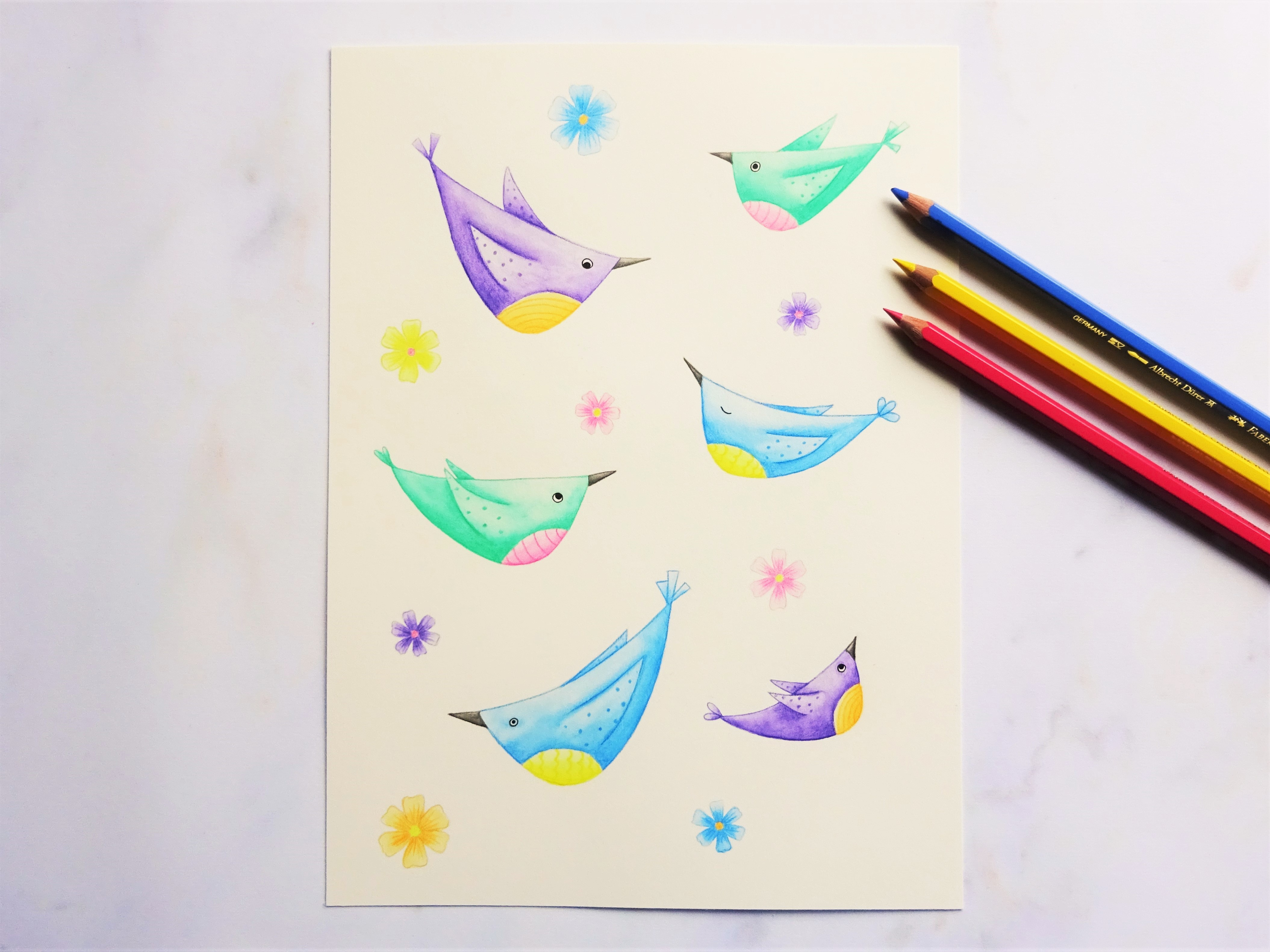 A watercolour pencil illustration showing quirky colourful birds and flowers