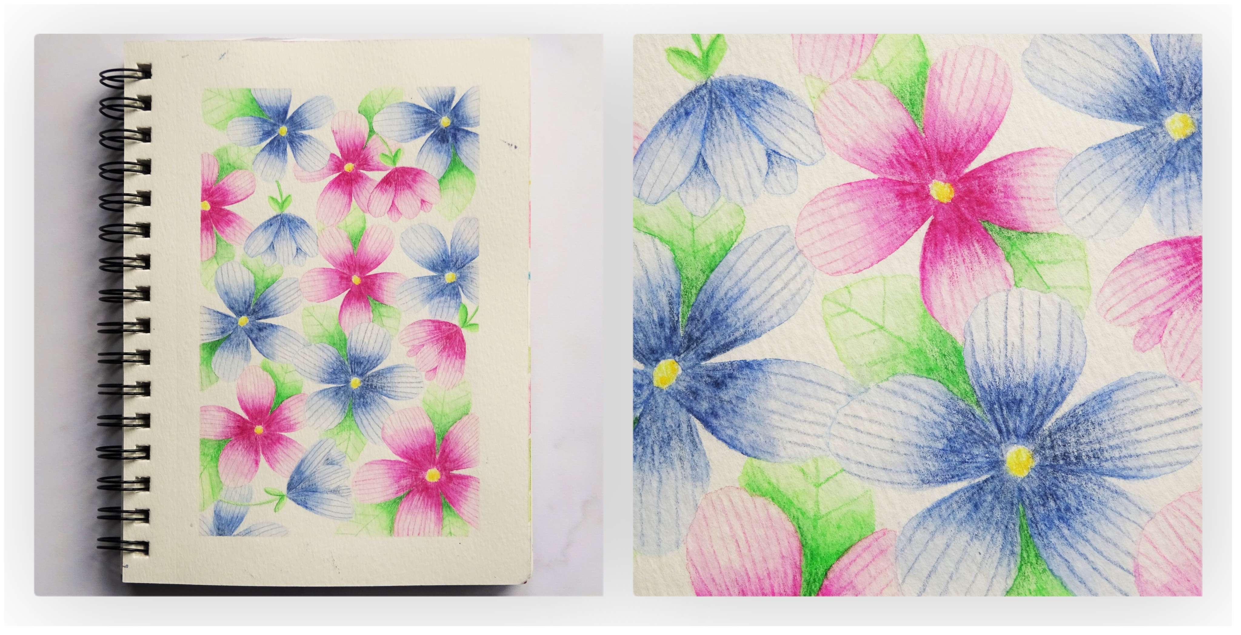 Purple and pink watercolour pencil illustration